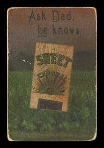 Picture, Helmar Brewing, Helmar Oasis Card # 52, Howie Camnitz, White cap, blue bill, Pittsburgh Pirates